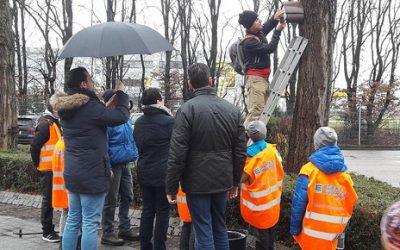 Nistkastenreinigung in Offenburg