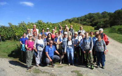 Seniorenwanderung in Bad Bellingen
