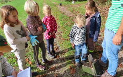 Familiengruppe leert Nistkästen